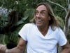Iggy Pop in Wild Thing
