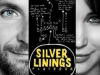 Il lato positivo - Silver linings playbook